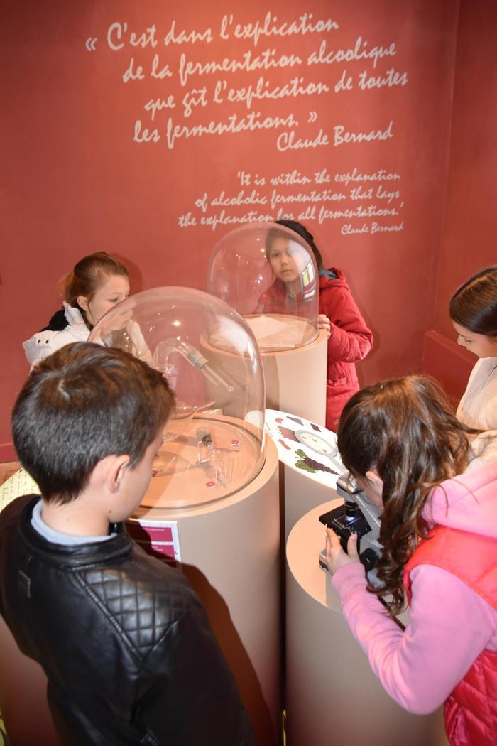 Journées du patrimoine 2020 - Visite du musée Claude Bernard