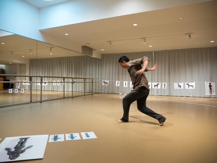 Nuit des musées 2019 -Spectacle Danse au musée