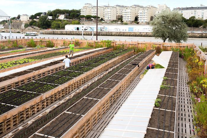 Journées du patrimoine 2019 - Du Quai des Plantes au CAP 44
