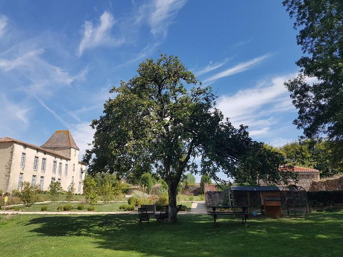 Journées du patrimoine 2020 - Visite libre et interactive du Manoir des Sciences