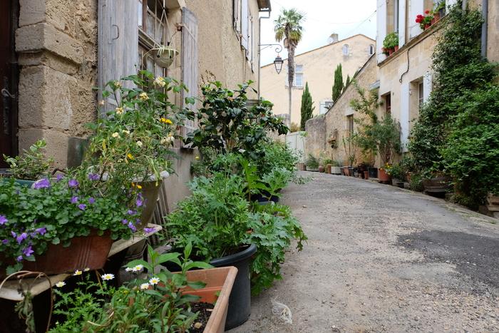 Jardiner la rue