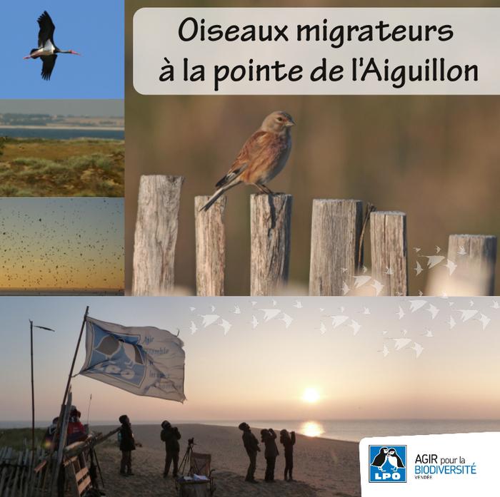 Journées du patrimoine 2020 - Point d'obs à la pointe de l'Aiguillon
