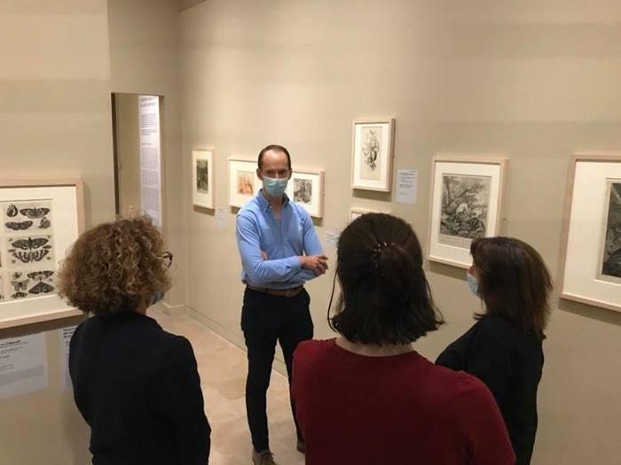"""Découvrez le nouvel accrochage des cabinets d'arts graphiques du musée en écho à la réouverture du MOBE sur la thématique de la """"Nature imagée par les arts graphiques"""""""