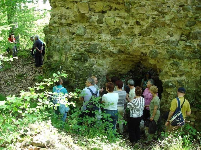 Journées du patrimoine 2019 - Visite guidée des vestiges du Château du Stettenberg
