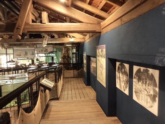 Journées du patrimoine 2020 - Mémoire de Saumon