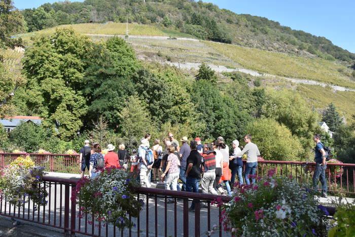 Journées du patrimoine 2020 - Balade découverte du vignoble du Rangen et son sentier viticole