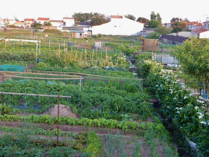 Journées du patrimoine 2019 - Les Jardins du Marchais