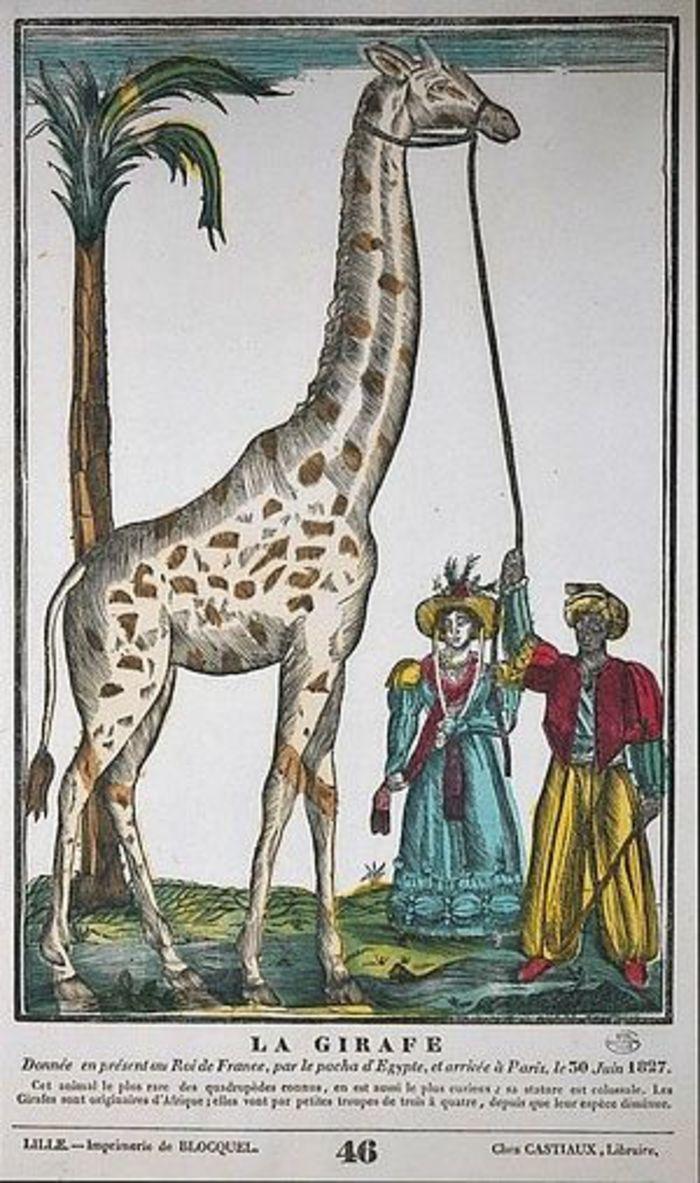 Journées du patrimoine 2019 - Rendez-vous Famille - Animation collective Peignez la girafe !