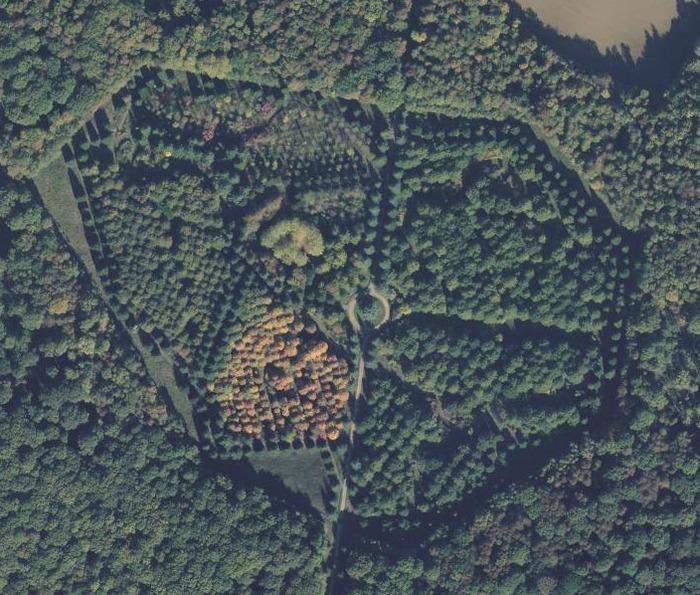 Découverte de l'Arboretum de La Roche-Guyon