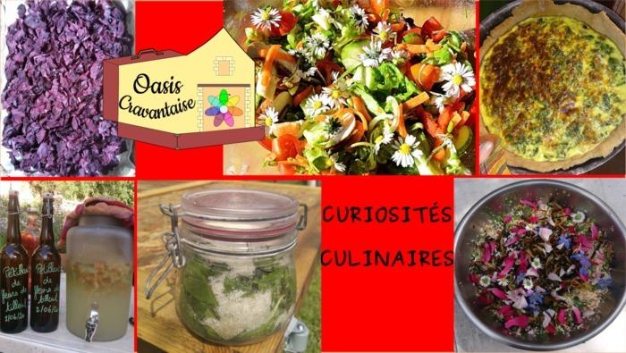 Curiosités Culinaires