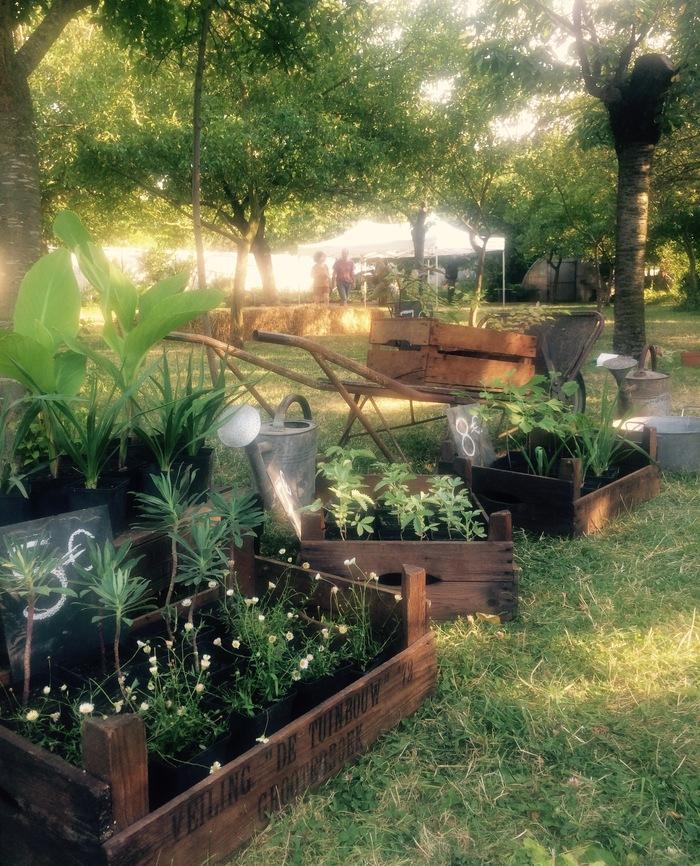 Nuit des musées 2019 -Visite commentée et conseil au jardin pépinière du Jardin école