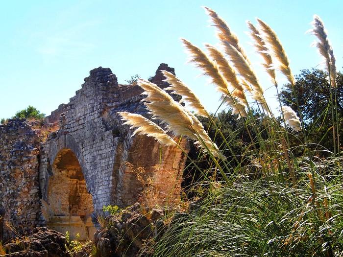 Journées du patrimoine 2019 - Visite guidée Aqueducs et la meunerie de Barbegal