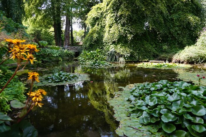 Journées du patrimoine 2020 - Visite libre du jardin et de l'exposition florale « Éclosion de vie, éclosion de fleurs »