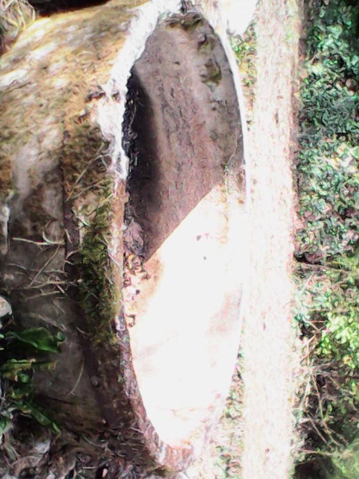 Journées du patrimoine 2019 - Chantier des anciennes fosses de tannage végétal