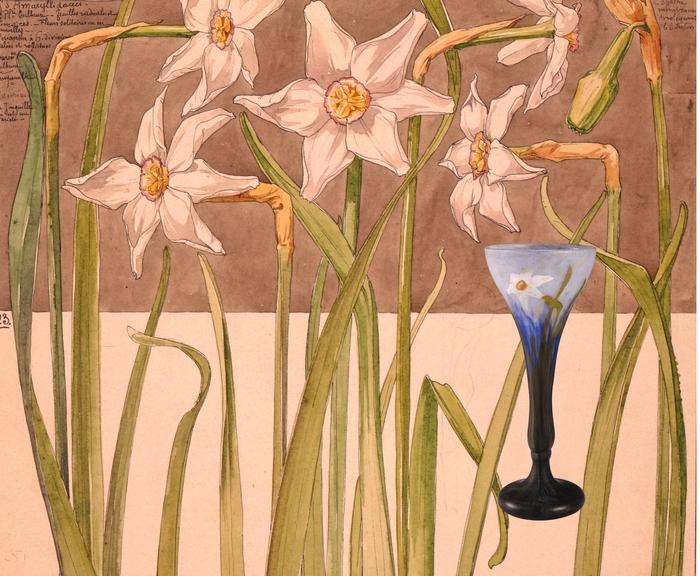 Journées du patrimoine 2019 - Flore 1900 : une exposition Art nouveau sous l'Arc Héré