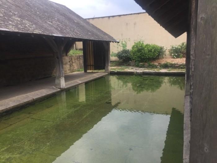 Journées du patrimoine 2019 - Exposition : patrimoine et biodiversité du quartier de Lancrel