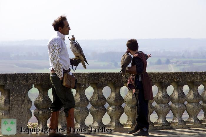 Journées du patrimoine 2019 - Spectacle de Fauconnerie