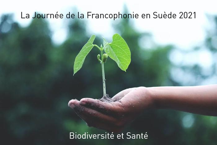 """Le 18 mars, les représentations des pays membres de la Francophonie en Suède, organisent une conférence en ligne sur le thème """"Biodiversité et Santé""""."""