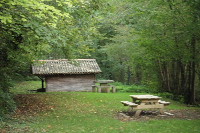 Journées du patrimoine 2019 - Promenade libre en forêt