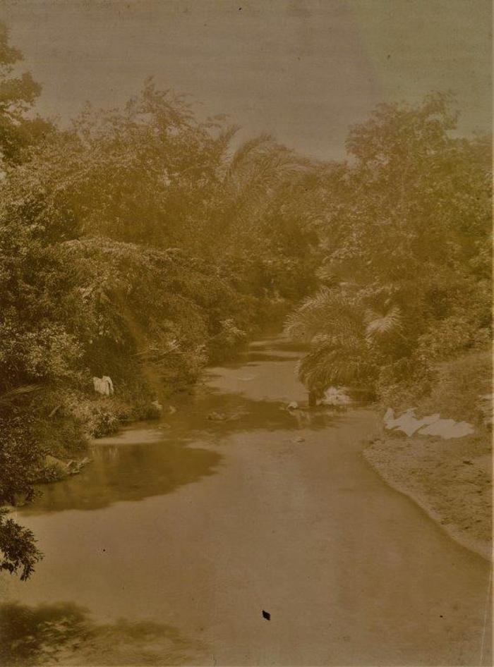 Journées du patrimoine 2020 - Morne-Rouge / Les cours d'eau des pitons du Carbet : des milieux variés, riches en biodiversité