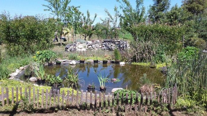 Journées du patrimoine 2019 - Découverte d'un jardin-verger de légumes anciens