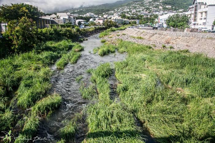 Journées du patrimoine 2019 - Balade Tikatsou le long de la rivière Saint-Denis