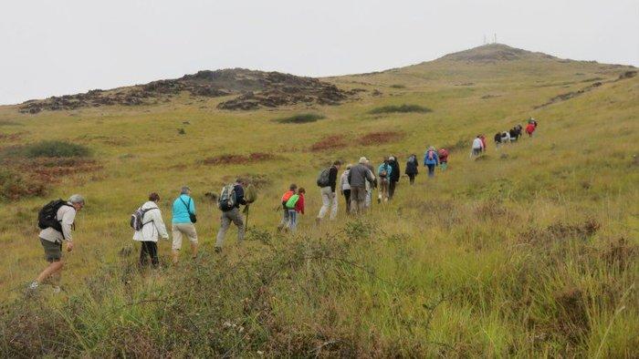 Journées du patrimoine 2020 - Sortie nature à la découverte du Puy de Wolf, site classé Natura 2000