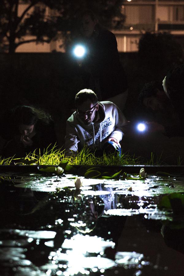Nuit des musées 2019 -Visite commentée du jardin à la lampe torche