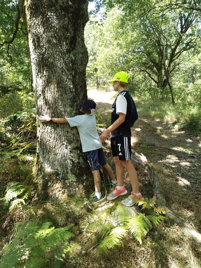 Une balade jeu, une balade de sensations et d'images... Pas besoin de mots pour apprécier la nature en famille !
