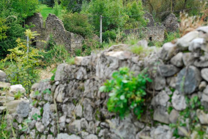 Journées du patrimoine 2019 - A la découverte du patrimoine naturel