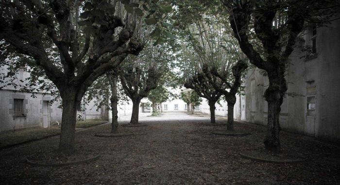 Journées du patrimoine 2019 - Visite Libre du Parc Paysager - site de l'EPSM Etienne Gourmelen