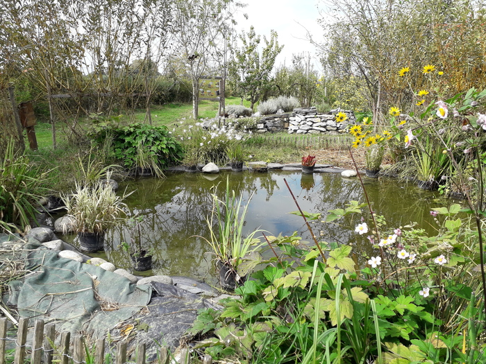 Journées du patrimoine 2020 - Découverte d'un jardin-verger de légumes anciens