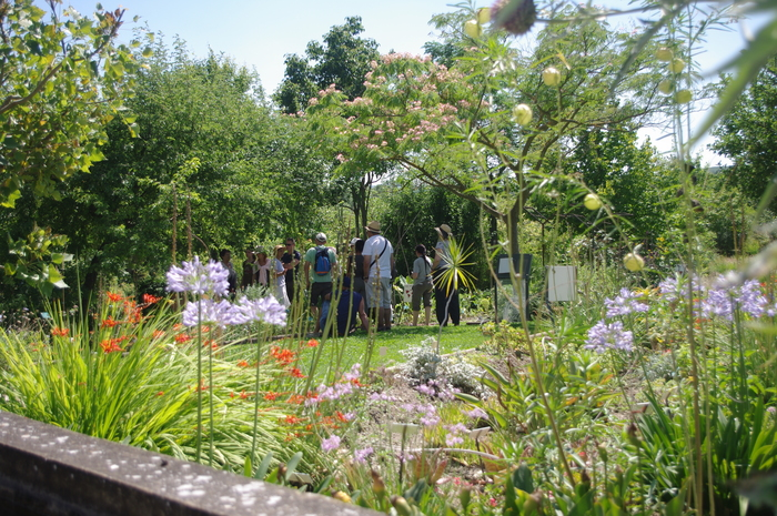 Journées du patrimoine 2020 - Salagon, jardins d'histoires, jardins de sens