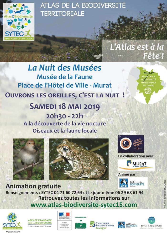 Nuit des musées 2019 -Ouvrons les oreilles, c'est la nuit ! A la découverte de la vie nocturne, oiseaux et faune locale