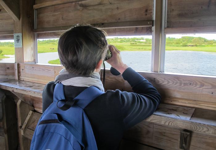 Journées du patrimoine 2019 - Visite guidée des marais à découvrir