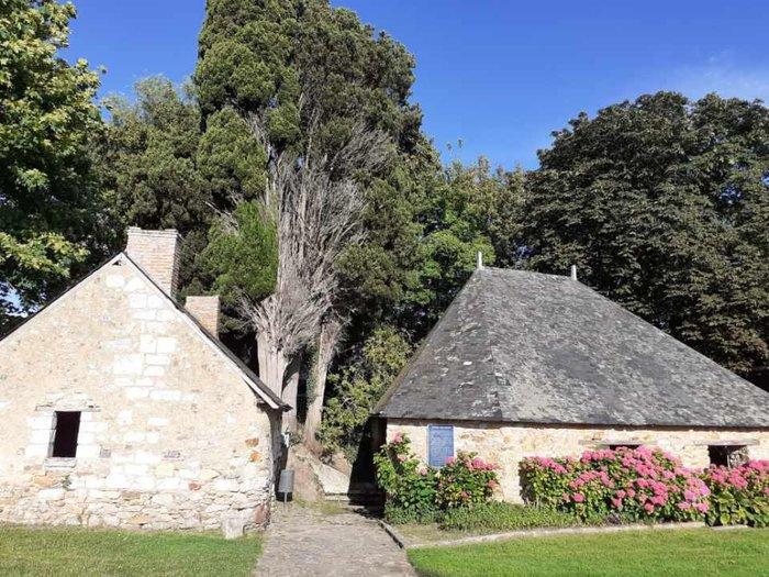 Journées du patrimoine 2020 - Visite guidée du village de Thorigné d'Anjou