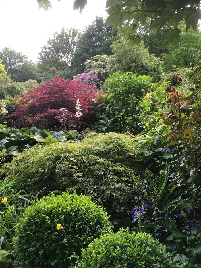 Visite guidée du jardin du Mesnil