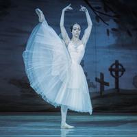 Menton - Spectacle de Danse : « Giselle »