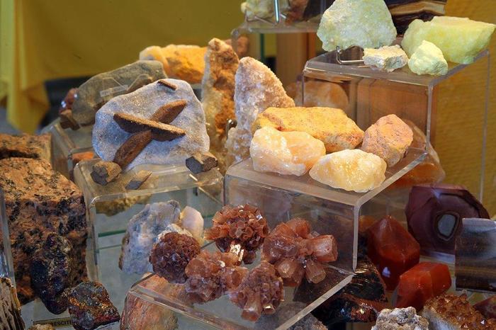 Journées du patrimoine 2020 - Visite guidée du Musée des Origines de la Terre à la Préhistoire