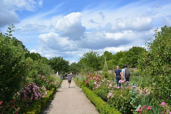 Le parc, le jardin et le potager du château de La Bussière réouvrent leurs portes aux visiteurs, tous les jours sauf le mardi de 10h à 12h et de 14h à 18h