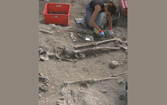Pour connaître les hommes, l'environnement et les climats du passé, les archéologues étudient les traces les plus infimes conservées dans le sol. Cela requiert les compétences de disciplines...