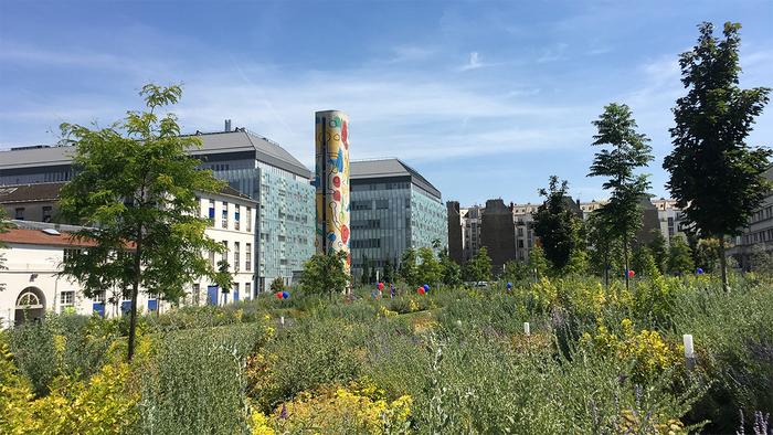 Journées du patrimoine 2019 - Visite du jardin de l'hôpital Necker-Enfants malades