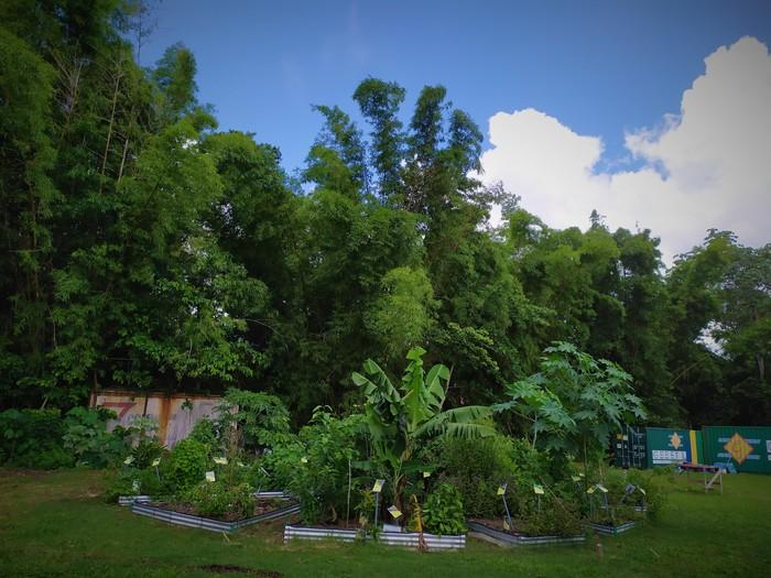 Journées du patrimoine 2020 - FdF / Visite de l'Ecolieu de Tivoli