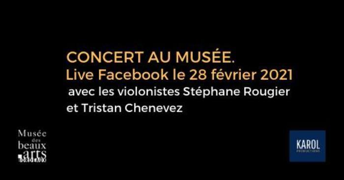 CONCERT LIVE en ligne au Musée des Beaux-Arts à Bordeaux