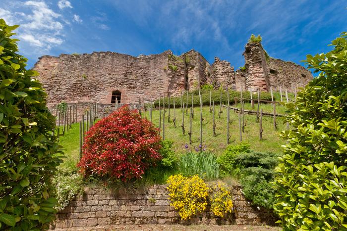 Journées du patrimoine 2019 - Visites guidées du site du Château d'Epinal