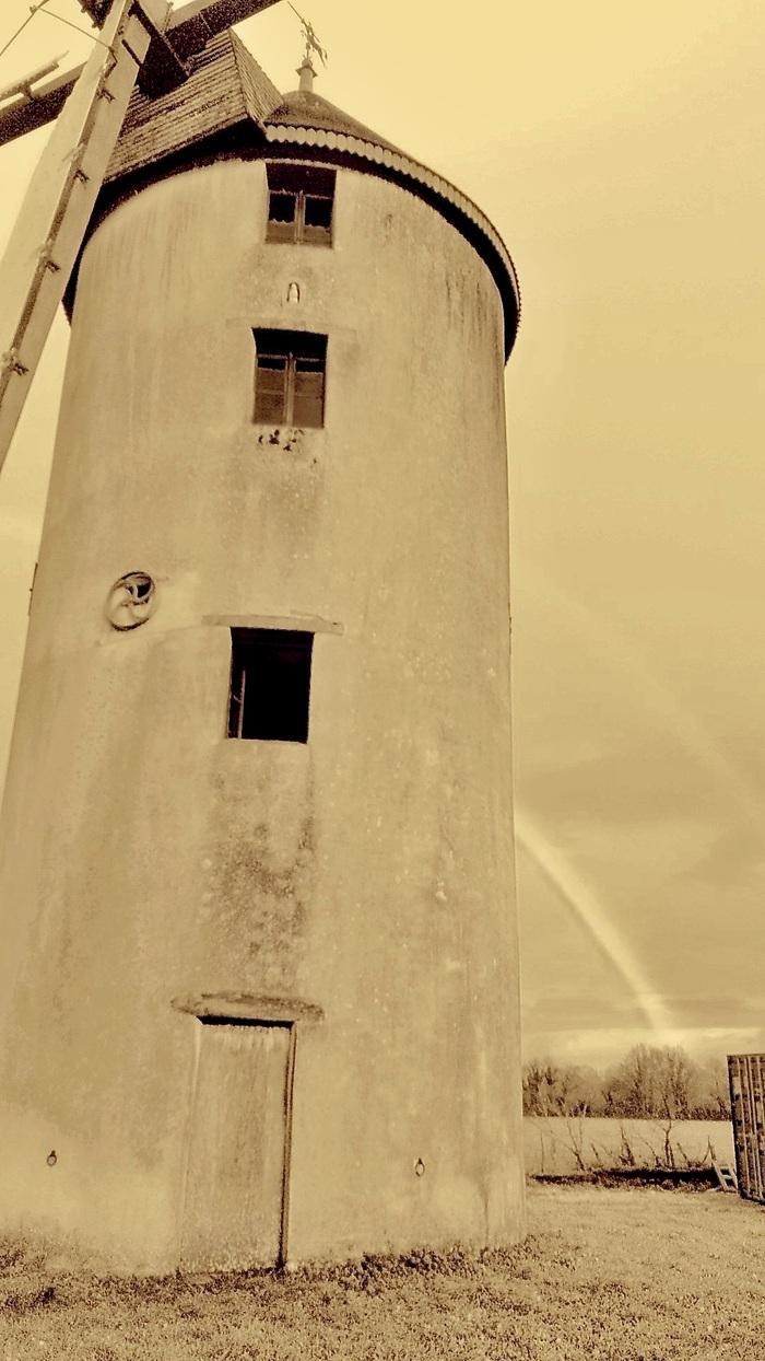 Journées du patrimoine 2020 - Portes ouvertes au moulin de la Bicane