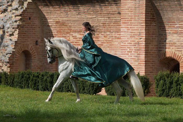 Journées du patrimoine 2020 - Les Médiévales de Belleperche