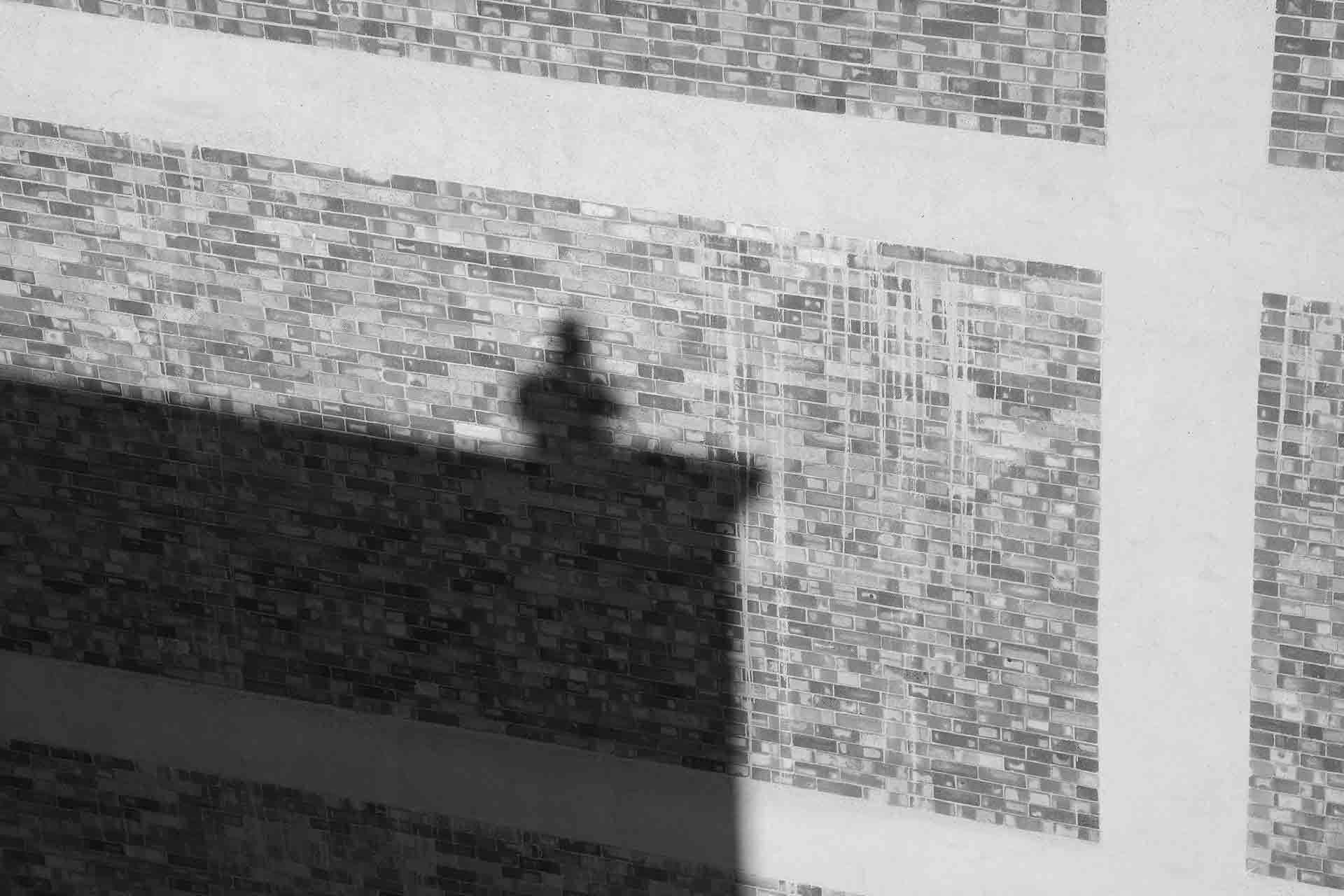 Exposition Jonathan Hindson « Choses vues depuis mon toit »