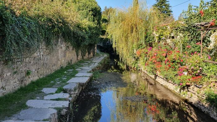 Journées du patrimoine 2020 - Découverte du patrimoine naturel de la ville de Saint-Maixent-l'Ecole