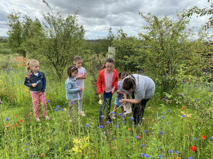 Journées du patrimoine 2020 - Ateliers pour enfants aux Jardins Fruitiers de Laquenexy